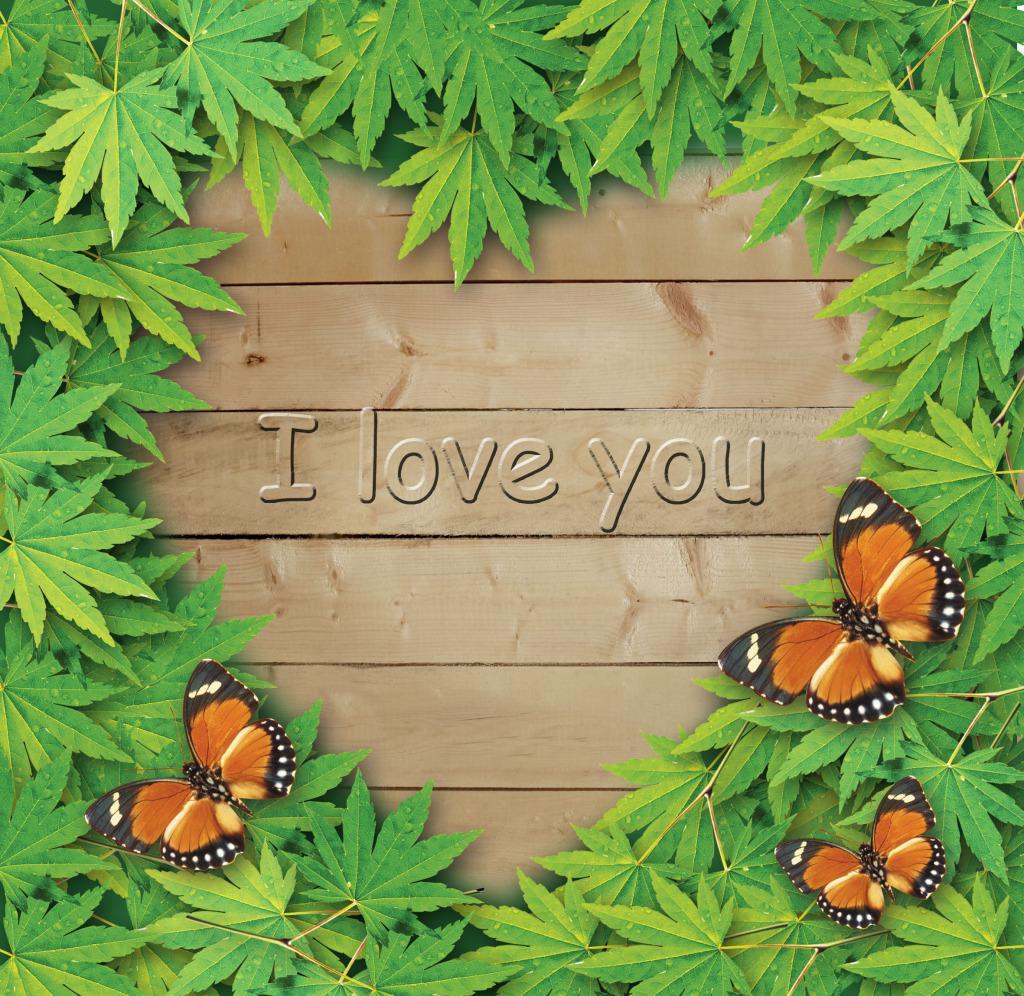 我爱你绿叶边框