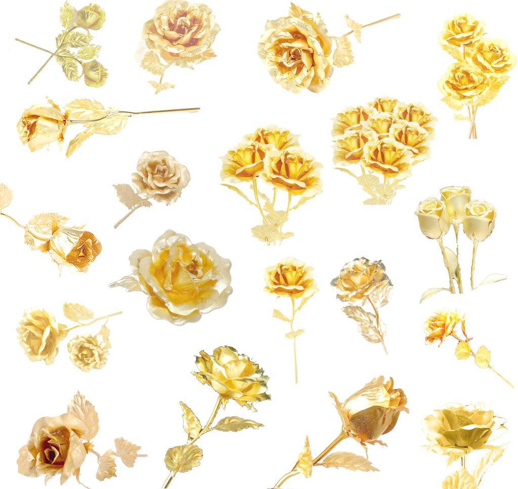 黄金玫瑰psd素材